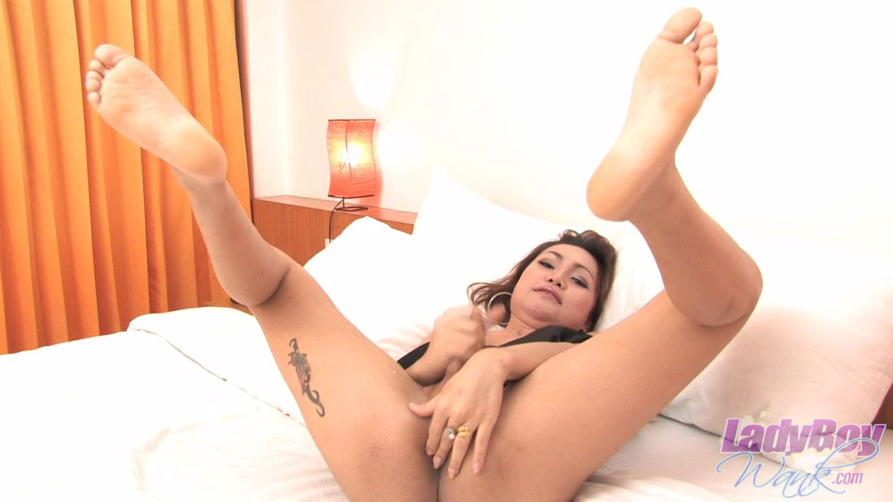 Latest Ladyboy Dildo Video Update